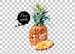 有机食品水果菠萝季节性食品,水彩画菠萝,切片菠萝与文本覆盖PNG图片