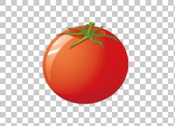 蕃茄菜季节性食物例证,蕃茄蕃茄PNG clipart食物,橙色,营养,茄属图片