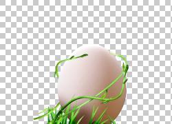 蛋藤,藤蛋PNG剪贴画食物,电脑壁纸,破蛋,草,复活节彩蛋,复活节彩