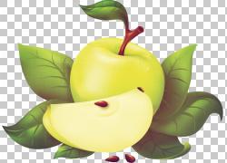 苹果,彩绘苹果PNG剪贴画水彩画,画,食物,奶奶史密斯,电脑壁纸,青