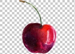 水彩画樱桃,樱桃PNG剪贴画画,食物,手,海报,卡通,樱桃,花樱桃,静图片