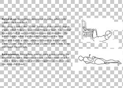 肢体关节内收肌的臀部大腿肌肉,其他PNG剪贴画杂项,角度,文本,其