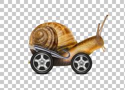 蜗牛互联网,蜗牛汽车PNG剪贴画汽车事故,动物,服务,老式汽车,环保