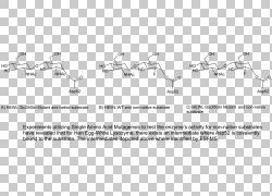 纸车线技术角度,汽车PNG剪贴画角度,白色,文本,汽车,单色,运输,汽