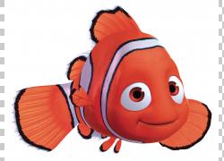 Crush Finding Nemo Pixar,Squishy的PNG剪贴画橙色,电影,汽车,红