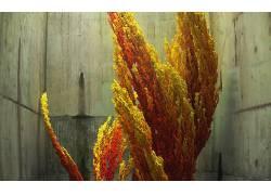 抽象,市区老化,CGI,数字艺术,火,3D465789图片
