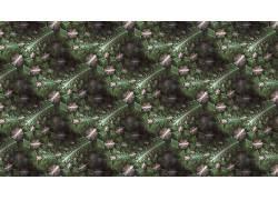 抽象,分形,模式,数字艺术614152
