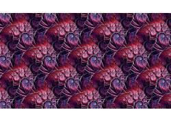 抽象,分形,模式,数字艺术614177