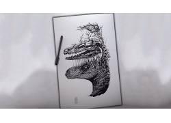 伶盗龙属,抽象,单色,头骨,脑,笔,牙285983