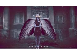 妇女,Photoshop中,抽象,天使,翅膀,审查431739