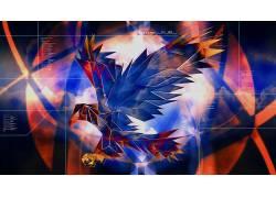 抽象,鸟类,PC大师赛,云629745
