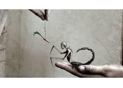 抽象,蝎子,头骨,胡萝卜,数字艺术72385