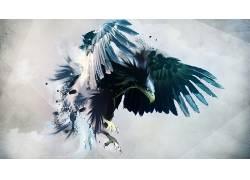 鹰,艺术品,抽象,数字艺术,飞行27058