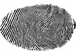 极简主义,白色背景,指纹,黑色,白色,抽象,单色161237