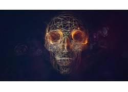 线框,头骨,玫瑰,抽象,数字艺术60221