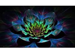 数字艺术,抽象,华美,分形花,泛着180240