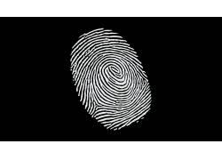 极简主义,黑色的背景,黑色,白色,抽象,单色,指纹161232