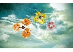 树木,抽象,天空,明星,云,数字艺术60461图片
