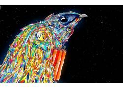 迷幻,抽象,鸟类650134