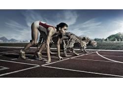 CARRER,猎豹,跑,数字艺术,妇女,动物,运动,体育,运动员,开始16768