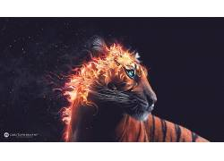 Desktopography,动物,虎,火,数字艺术,艺术品93244