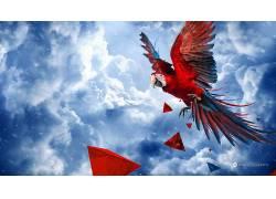 Desktopography,性质,动物,鹦鹉,鸟类,天空,数字艺术87948