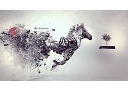 Desktopography,数字艺术,斑马,动物93242