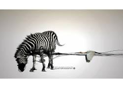 Desktopography,斑马,数字艺术,动物93241图片