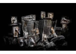 黑暗,艺术品,动物,鸟类561216