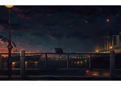 猫,晚,艺术品,天空,港口,动物,灯笼,明星392595