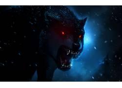 数字艺术,狼,动物687400
