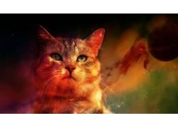 数字艺术,空间,行星,动物,猫580388