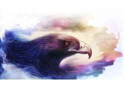 幻想艺术,鹰,艺术品,动物411847