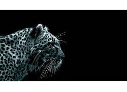 性质,动物,大猫,数字艺术399002