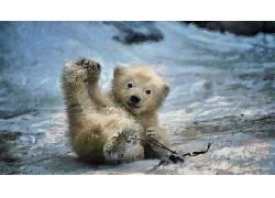 性质,动物,数字艺术,绘画,北极熊,小动物,冬季,雪428805