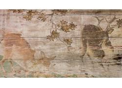 性质,动物,数字艺术,鹿,木表面,木,绘画,木板,科,树叶428803