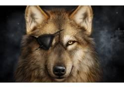 动物,数字艺术,狼,黄眼睛,抽烟378230