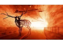 动物,数字艺术,骨架,电线,隧道,鹿,灯火,路,路标531263