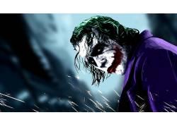 电影,蝙蝠侠,黑暗骑士,滑稽角色,MessenjahMatt,希斯莱杰52019