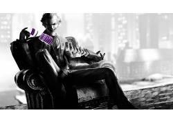 长椅,扶手椅,滑稽角色,牌,视频游戏,电影,蝙蝠侠,选择性着色39515