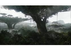 阿凡达,木,性质,潘多拉,树木,电影,科幻小说36622