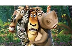 电影,马达加斯加(电影),斑马,动画电影50640