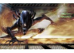 科幻小说,Xenomorph,外星人,外星人(电影),电影,艺术品31000