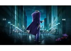 蝙蝠侠,黑暗骑士,希斯莱杰,电影,滑稽角色30799