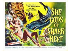 电影海报,她是鲨鱼礁的神,B电影,电影,电影海报116159