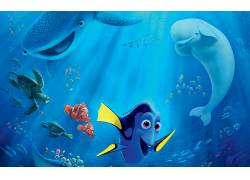 海底总动员2,皮克斯动画工作室,迪士尼皮克斯,电影,动画电影45586