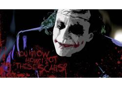滑稽角色,蝙蝠侠,黑暗骑士,希斯莱杰,电影,活版印刷,油漆飞溅,Mes