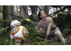 星球大战,星球大战:原力觉醒,黛西雷德利,BB-8,电影335281