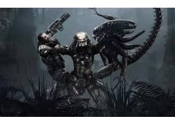 捕食者(电影),外星人(电影),视频游戏,Xenomorph116363