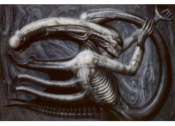 H.R.Giger,外星人(电影),生物,恐怖,科幻小说,艺术品113764